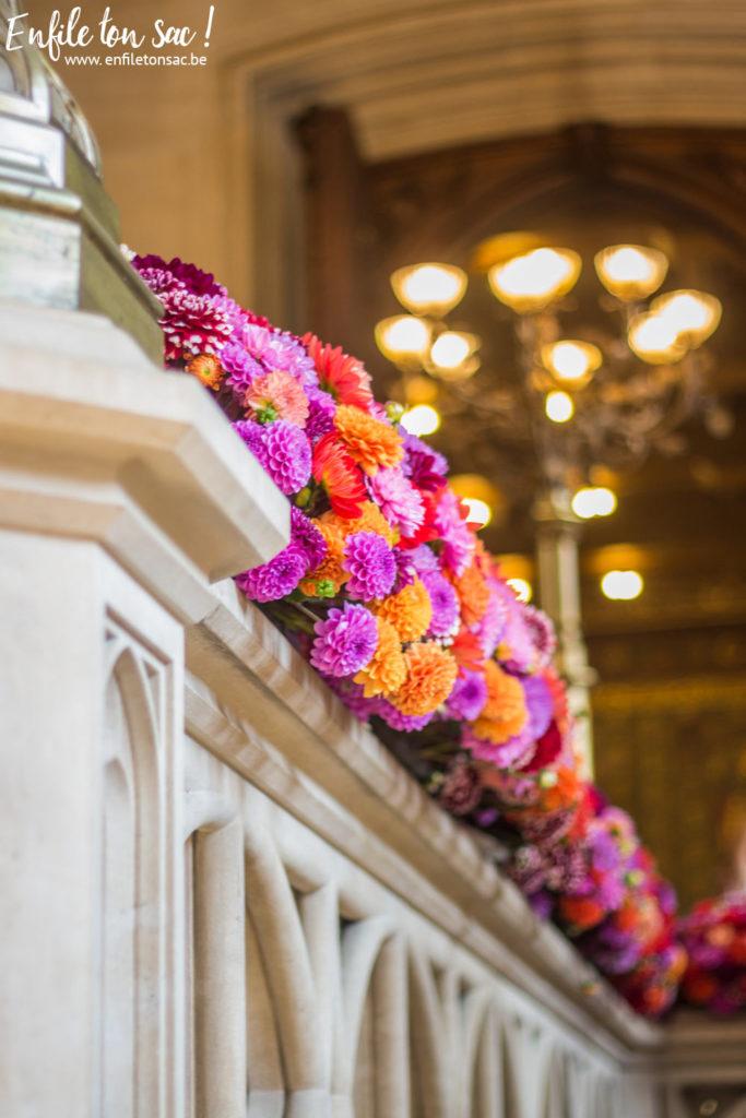 13082015 IMG 9695 125 683x1024 Flowertime 2015   Bruxelles , exposition Hotel de ville