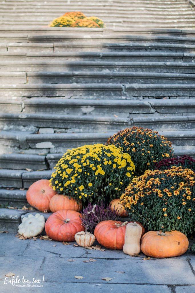 halloween pairi 2015 683x1024 Halloween à Pairi Daiza   dates et informations 2016