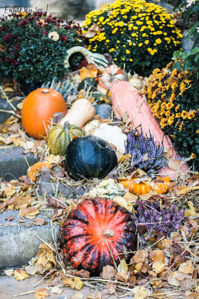 halloween pairi daiza 683x1024 Halloween à Pairi Daiza   dates et informations 2016
