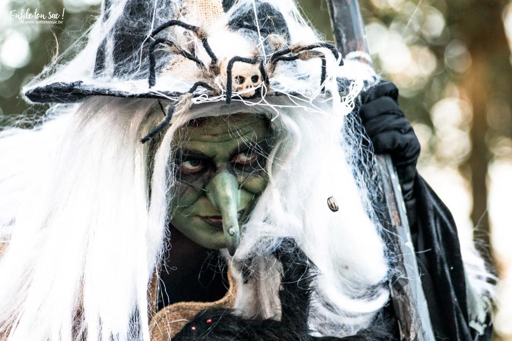 pairi daiza halloween sorcieres Halloween à Pairi Daiza   dates et informations 2016