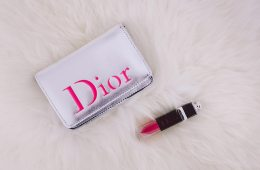 Travel Size Essentials Dior Addict Lacquer Plump