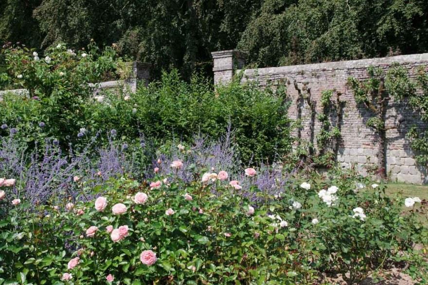 Roseraie et Potager du Château de Mesnil Geoffroy