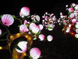 Festival des Lanternes Gaillac 2017
