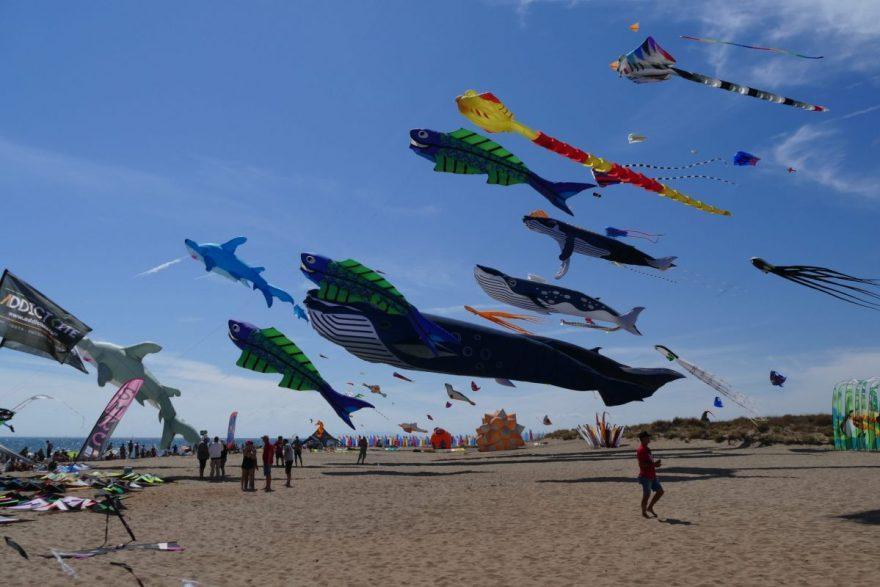 portiragnes, festival du vent