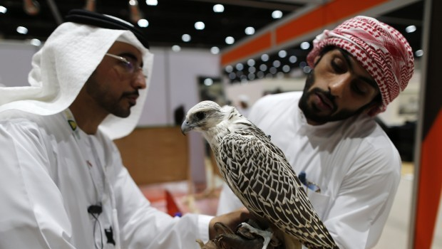 Abu Dhabi hunting exhibition combines heritage with technology