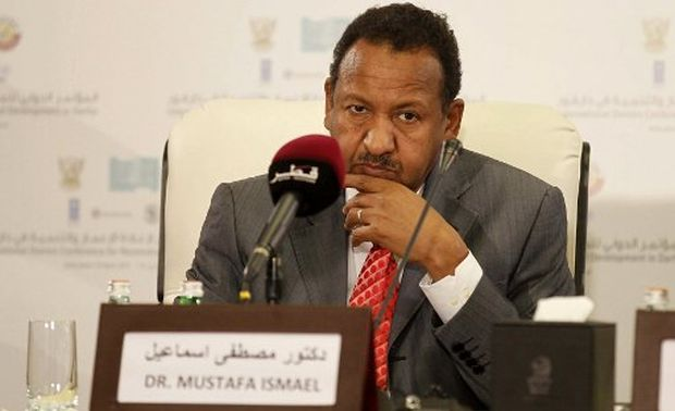 Sudanese Investment Minister on Cutting Fuel Subsidies, Protests