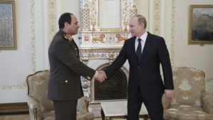 Russian President Vladimir Putin (R), shakes hands with Egypt's Abdel-Fattah El-Sisi during their meeting at the Novo-Ogaryovo state residence outside Moscow on February 13, 2014. (Reuters/Mihail Metzel/RIA Novosti/Kremlin)