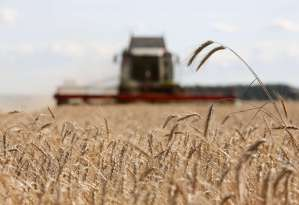 Bumper Russian Crops Overshadow Wheat-Export Tax as Prices Slide.