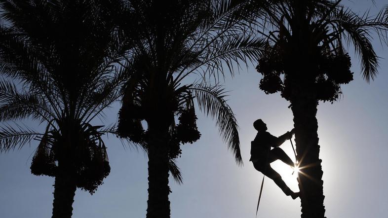 Dutch Technology to Help KSA Reduce Water Consumption