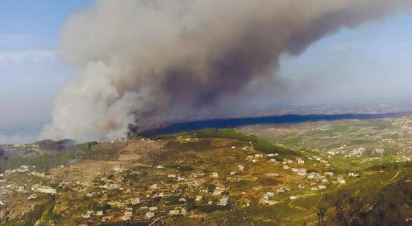 Fires Destroy Forests in the Latakia Countryside