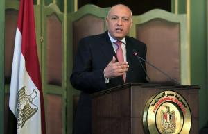 Egyptian Foreign Minister Shoukry speaks during a news conference after a meeting with his Italian counterpart Gentiloni at the foreign ministry in Cairo