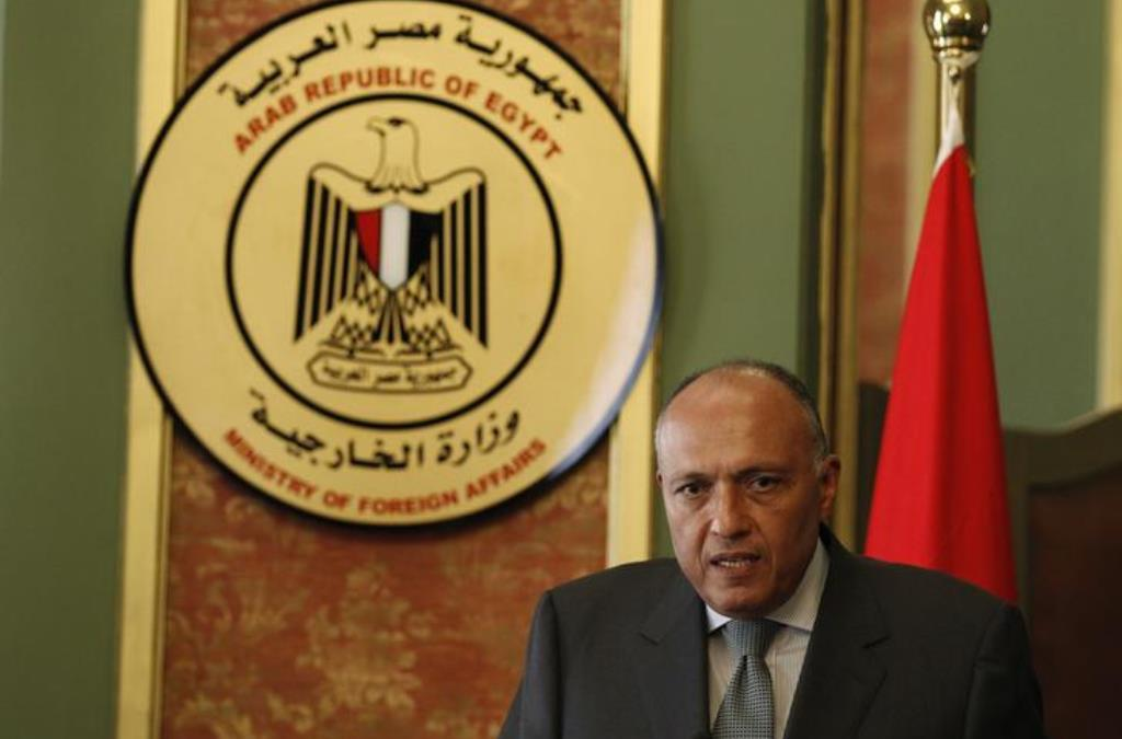 Egyptian FM: Relations with Saudi Arabia are Crucial