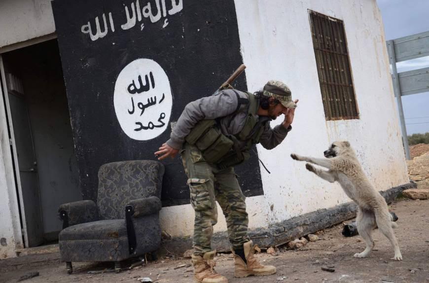 ISIS Besieged in Al-Bab, Disputes among Astana Sponsors