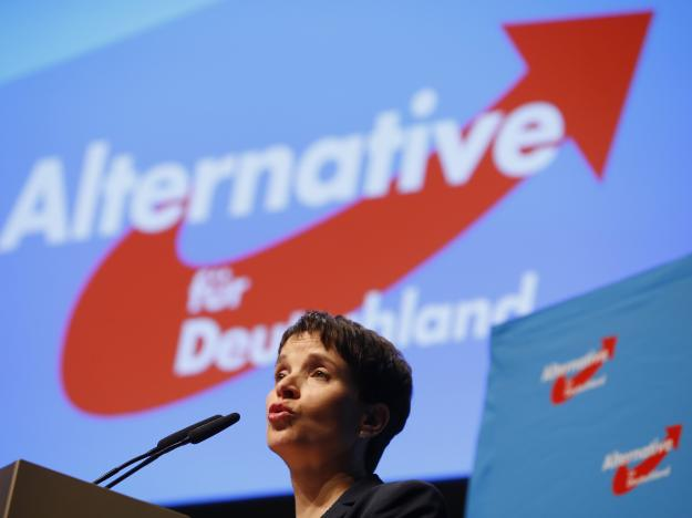 Germany: Divisions Emerge as Anti-Immigrant Party Tries to Take 'Mainstream' Stance