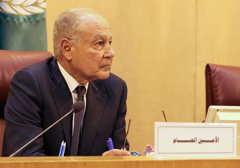 Aboul Gheit: Formation of Arab Peacekeeping Force a 'Very Good Idea'