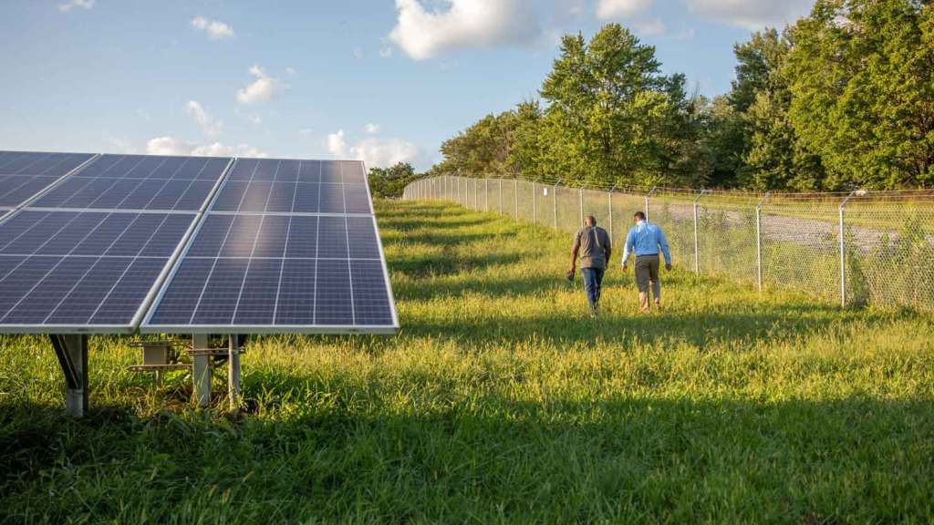 Photo of two men walking in a field of solar panels.