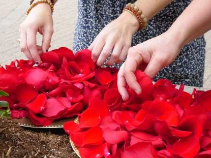 Rose Petals to be Thrown in Celebration