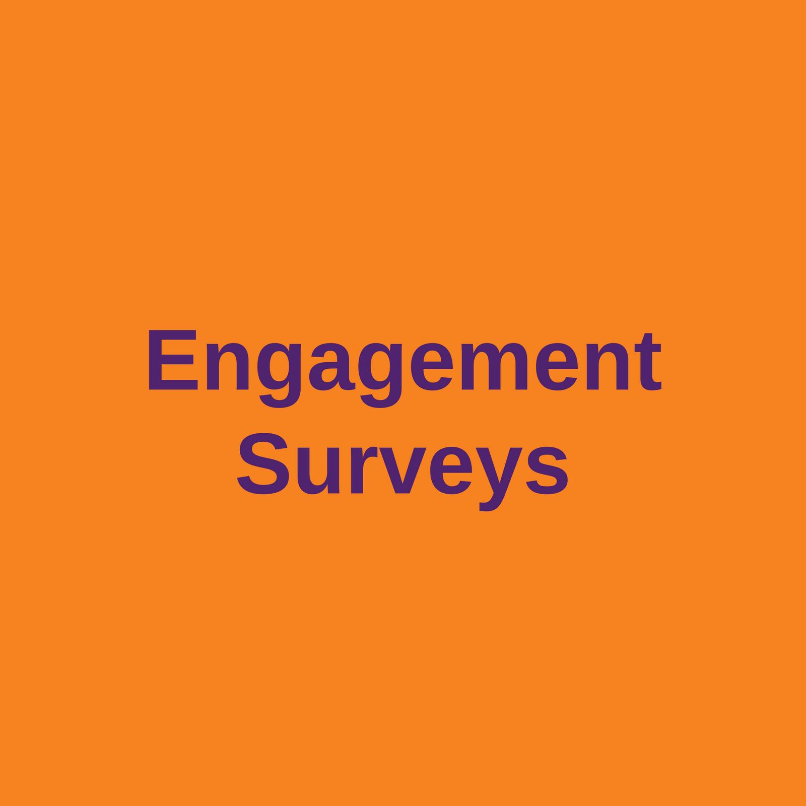 engagement surveys
