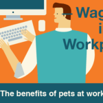 Why You May Want a Pet-Friendly Workplace