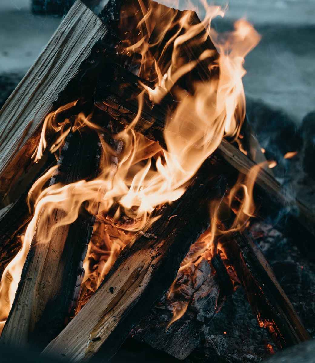 burning campfire with bright flames in nature