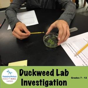 Biology Inquiry Lab