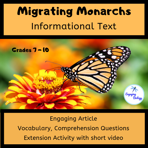 monarch butterfly informational text article