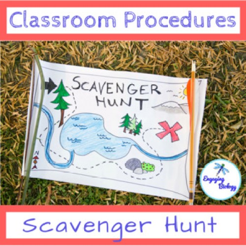 cover page for class procedures scavenger hunt activity