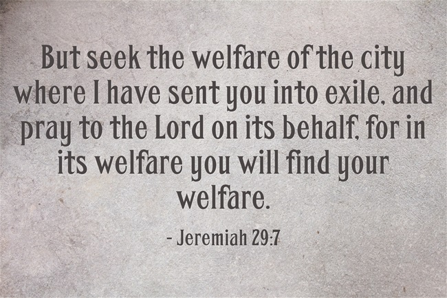 But-seek-the-welfare-of