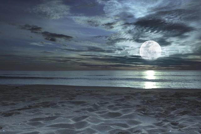 Moonlight ocean