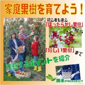 家庭果樹表紙