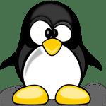 Google Penguin 2016.