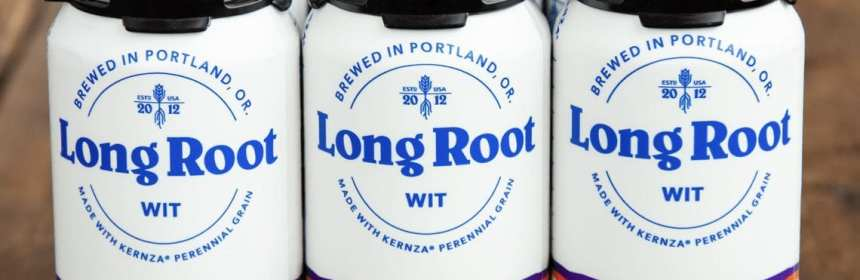 Patagonia Provisions Long Root Wit 6 pack