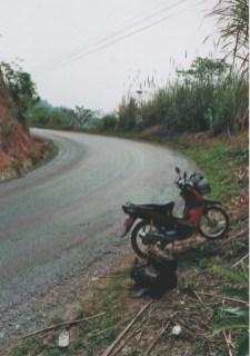 Der Halbautomatik Roller ist das Verkehrsmittel Nr. 1 in Laos, damit lässt sich auch so gut wie alles transportieren, von der fünfköpfigen Familie bis zu 50 Zoll Fernsehern