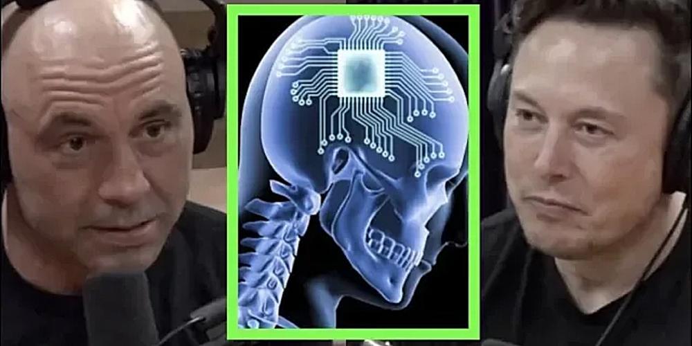 Elon Musk fala sobre Neuralink. Imagem: Joe Rogan via Youtube.
