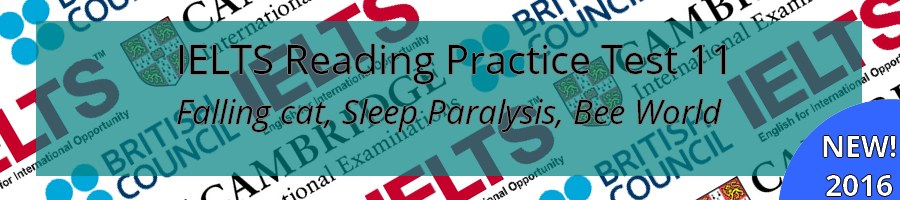 IELTS Reading Practice Test 11
