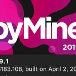 RubyMine 2019.1でRailsをdocker exec経由で起動可能になったがバグあって使い物にならない件