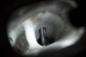 Clean intake valves