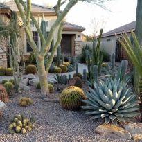 √ Desert Oasis for Frontyard Landscaping 2019 _frontyardlandscaping _landscapingideas _desertstylede