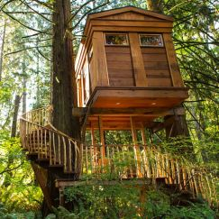 15 Unique And Extraordinary Treehouses For Adults _ fun and fabulous