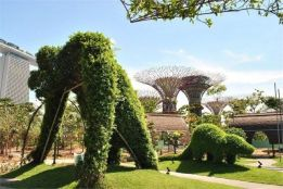 37 Beautiful Garden Pictures For You _ Engineering Basic (35)