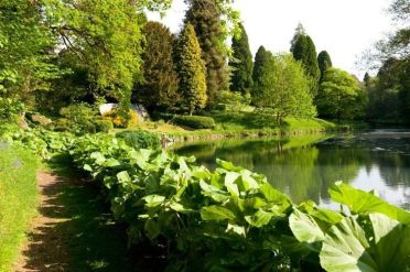 37 Beautiful Garden Pictures For You _ Engineering Basic (36)