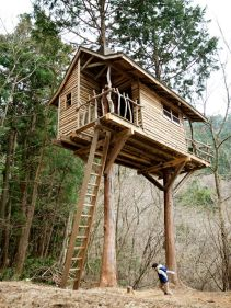 An amazing two tree treehouse with rustic ship lap siding and natural branch railings