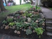 Best pictures_ images and photos about front yard landscaping ideas _homedecor _gardendecor _garden (12)