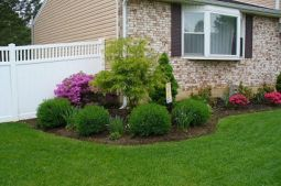 Best pictures_ images and photos about front yard landscaping ideas _homedecor _gardendecor _garden (14)
