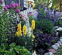 Best pictures_ images and photos about front yard landscaping ideas with perennials _homedecor _gar (56)