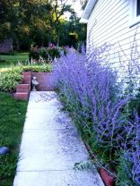 Best pictures_ images and photos about full sun front yard landscaping ideas _homedecor _gardendec (14)