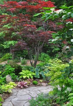 Best pictures_ images and photos about small front yard landscaping ideas _homedecor _gardendecor _ (11)