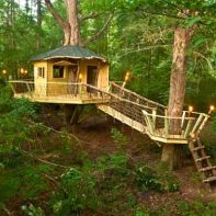 Building a treehouse for kids and adults_ before and after _ from thisoldhouse.com _ from Best Shed and Outbuild