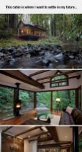 Dreamy cabin with a stream running alongside it_ tucked into a forest_ the great outdoors_ nature su