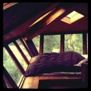 How amazing it would be to wake up in the tree tops every morning.